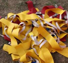 touch football red and gold flags